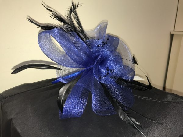 Royal Blue with black feathers