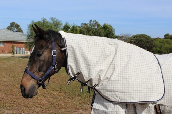 Heads To Taills- Waterproof cotton neck rugs