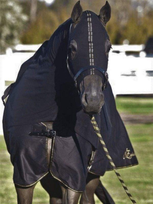 Earlwood Hood Black Zip