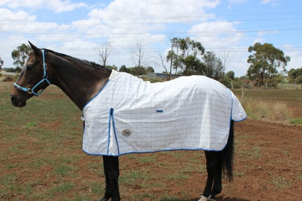 Poly Cotton diamond check Rug~Blue with surcingles