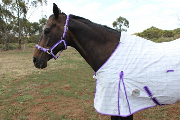 Poly Cotton Diamond Check~Purple WITH Surcingles (Belly Straps)
