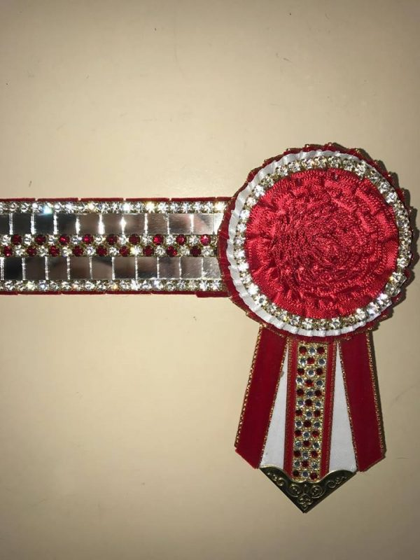 Red Mirror Browband